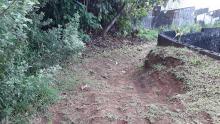 Route Taapuna à bitumer